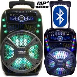 KARAOKE CASSA AMPLIFICATA 600W MP3 RADIO MICROFONO BLUETOOTH USB SD AUX TROLLEY