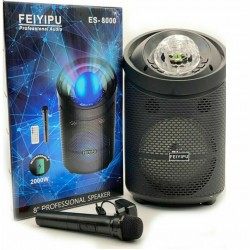 KARAOKE CASSA AMPLIFICATA 2000W MP3 RADIO MICROFONO BLUETOOTH USB SD AUX TROLLEY